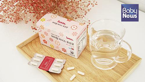 건강한 한국여성의 질에서 분리한 특허 유산균, 아이힐 비너스 유산균. ⓒ아이힐