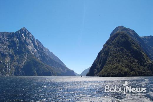 뉴질랜드의 아름다운 자연. ⓒ마누카내추럴코리아