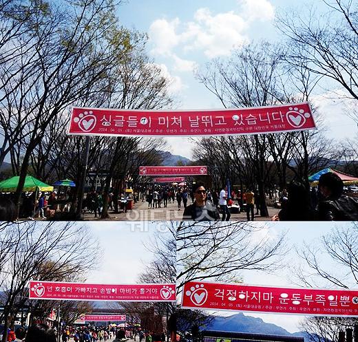 지난해 1500쌍 규모로 서울대공원에서 진행된 커플런은 올해 신촌에서 열릴 예정이다. 안산~신촌 일대에서 이런 풍경을 볼 수 있을 예정이다. 이기태 기자 likitae@ibabynews.com ⓒ베이비뉴스
