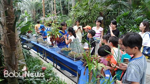 서울대공원은 7월을 맞아 동물, 식물, 곤충에 대한 다양한 생태학습 등 다양한 체험학습교실을 운영한다. ⓒ서울대공원