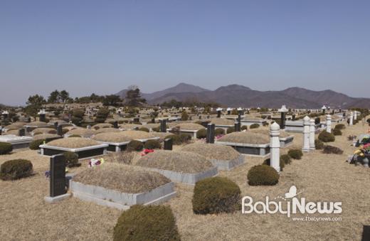 진달래 메모리얼파크는 국망산 줄기 금곡골에 위치해 전 묘역이 양지바르고 공해 없는 마사토로 형성된 묘원이다.ⓒ진달래 메모리얼파크