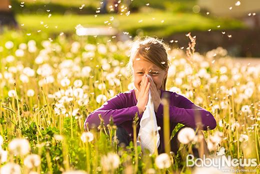기상청이 4월 1일부터 인공지능을 이용해 봄철 꽃가루 알레르기 유발 위험도를 알리는 꽃가루 농도위험지수 서비스를 시행한다. ⓒ기상청