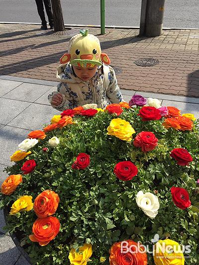 워킹맘, 당신의 봄바람을 응원합니다! ⓒ김신희