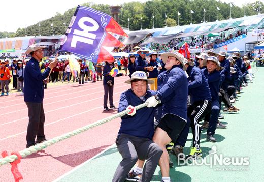 제57회 안동시민체육대축전은 총 29개 종목의 종합체전으로 진행됐다. ⓒ안동시