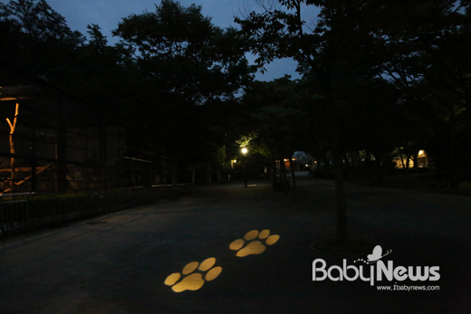 서울대공원은 폭염이 지속되는 무더위 속, 시민들이 시원하게 동물원을 관람 할 수 있도록 28일부터 다음달 20일까지 기간 중 금, 토, 일, 광복절 21시까지 야간 개장한다. ⓒ서울대공원